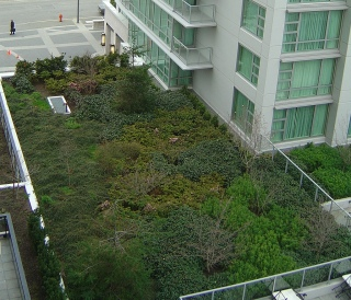 Victoria_BC_Marriott_green_roof